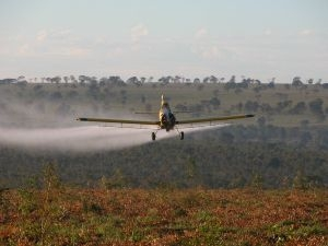 21 Year Old Cropduster Crashes and Burns in Tasmania