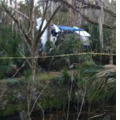 Pilot Walks Away from Cessna Crash in Florida Wood