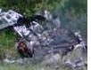 Cropdusting Chopper Crash in S. Africa