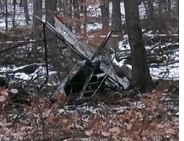 Two Fatalities in German Microlight Accident