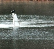 Bodies Recovered 5 Days After Ridgeway Reservoir Plane Crash