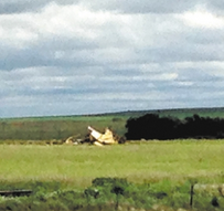 Small Plane Crashed in Ellis County, Pilot Killed
